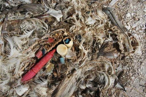 Photo of Okyanuslardaki Çöplükler