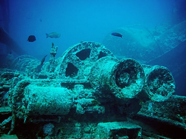 Photo of Thistlegorm'un Hikayesi
