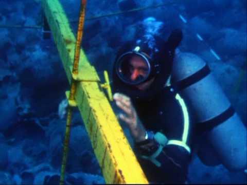 Photo of Nautical Archaeology – Beginnings – Bölüm 2