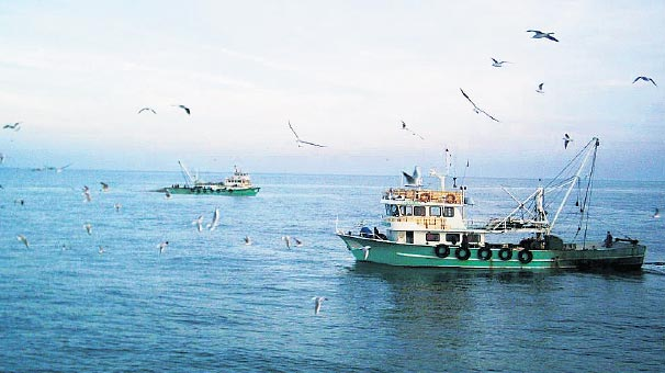 Photo of 'Karadeniz'de 5 bölge korunmalı'