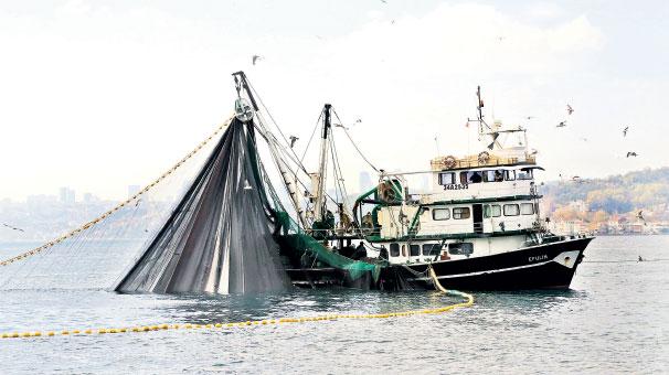 Photo of Bereketsiz sezonun nedeni: Aşırı avcılık