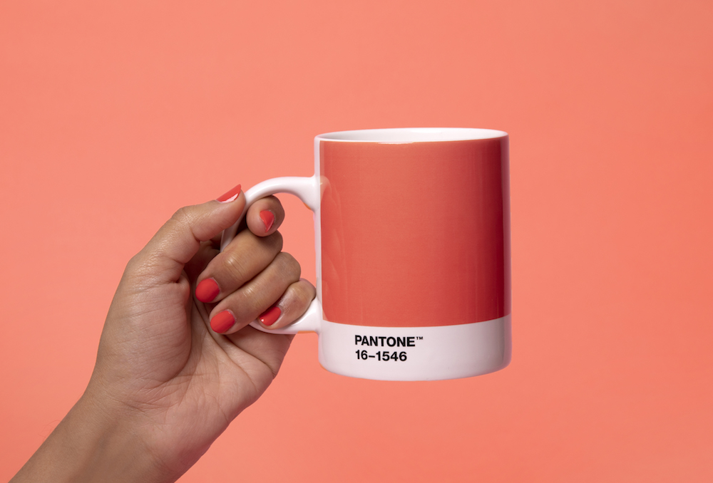 Photo of Pantone 2019'un rengini belirledi: Living Coral