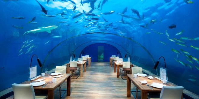 Bu restoranlarda yemek yemeyi unutabilirsiniz…