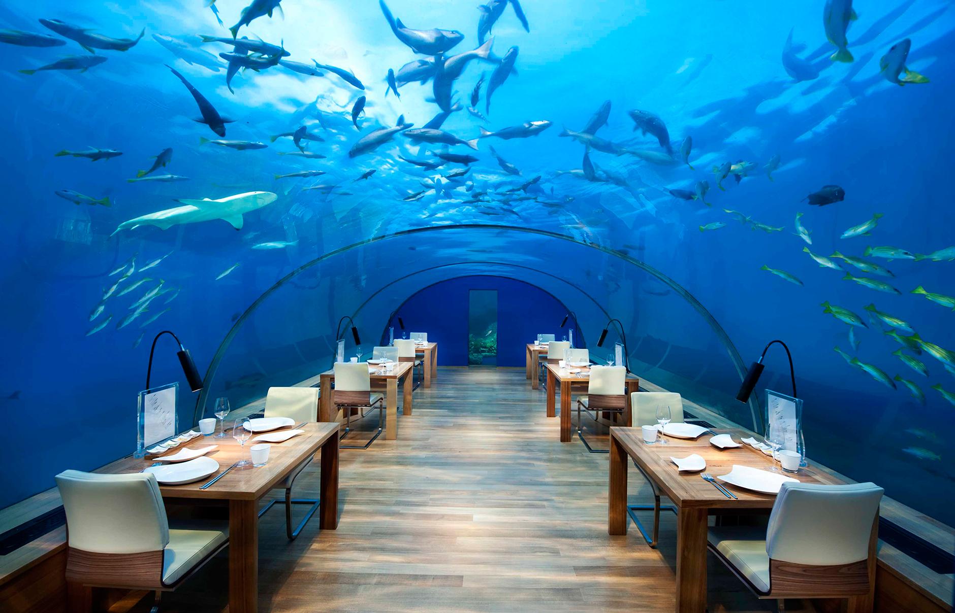 Photo of Bu restoranlarda yemek yemeyi unutabilirsiniz…